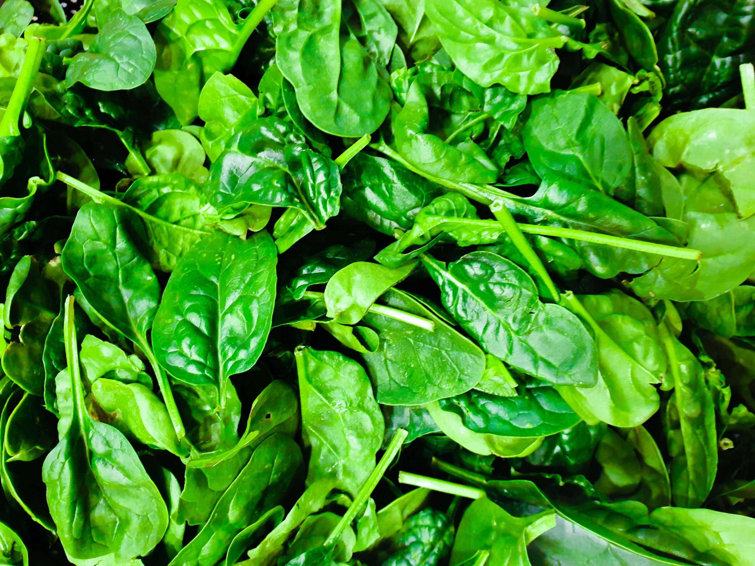 Spinach-Eating-Colourful-Foods